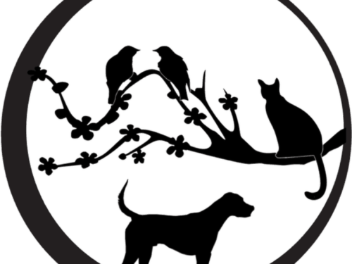 Jardinerie / Animalerie